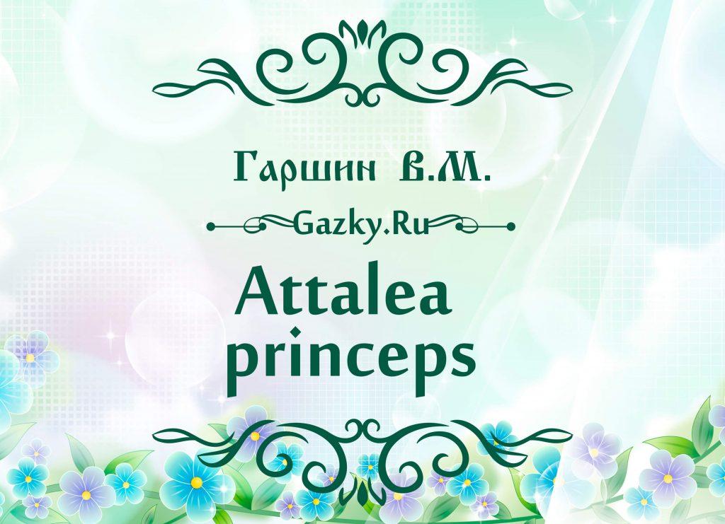 """Картинка к сказке """"Аttalea princeps"""" 🌼 Гаршин В.М."""