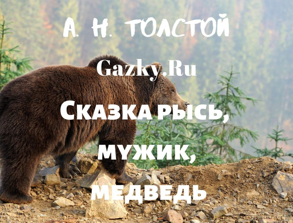 Сказка Рысь, мужик, медведь Толстого А. Н.